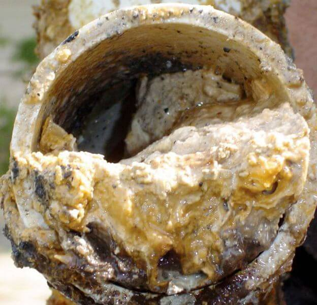 Fatberg prevention starts with education and community outreach.